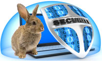 Securite_lapin